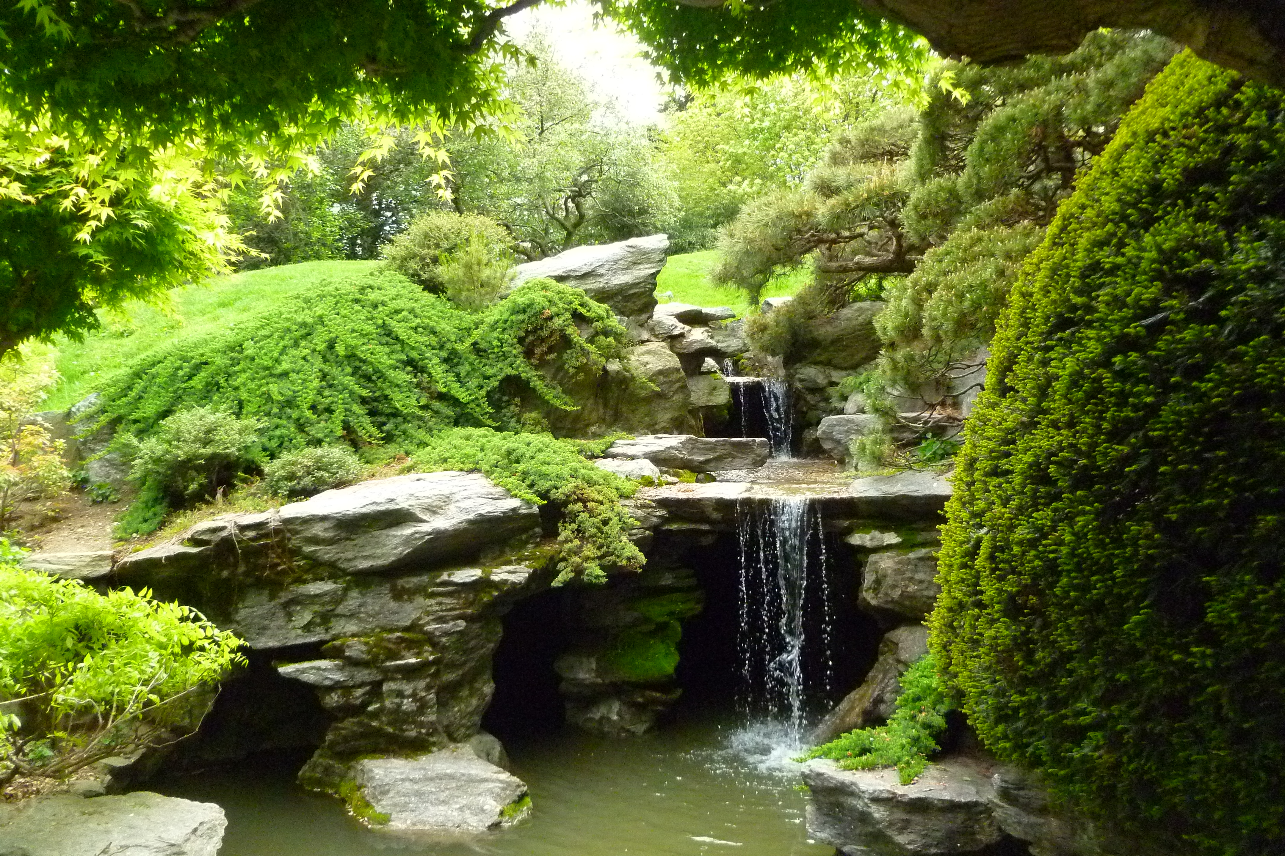 A japanese garden the farm the sea and the big city for Japanese garden water